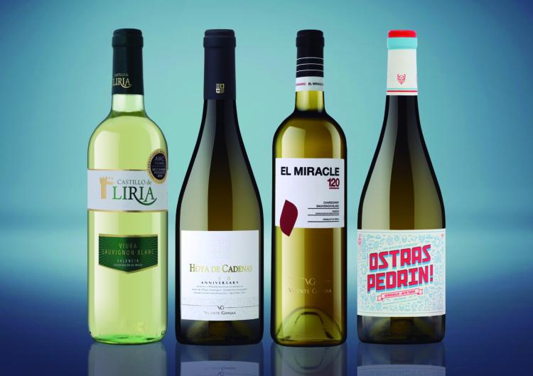 Vicente Gandía presenta los vinos jóvenes de la añada 2016 1