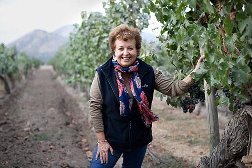 El Mercurio premia a Cecilia Torres por su destacada trayectoria enológica 1
