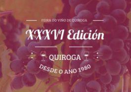 Feria del Vino de Quiroga, certamen vinícola pionero en la Ribeira Sacra 3