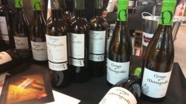 Catamos vinos de Bodega Crego e Monaguillo de la DO Monterrei 1