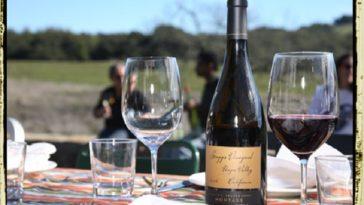 Cómo puntúa Wine Enthusiast a los vinos de los famosos 1