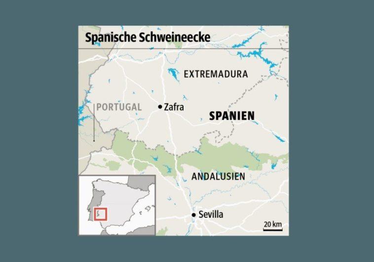 El periódico alemán 'SÜDDEUTSCHE ZEITUNG' destapa el fraude del jamón ibérico español 1