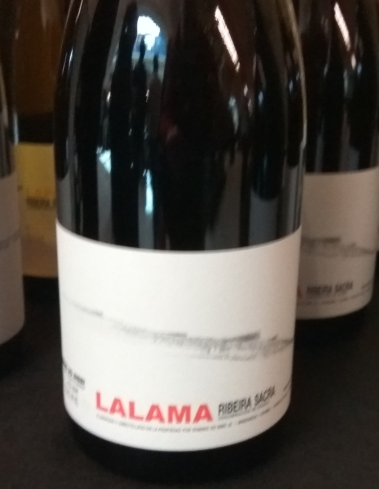 Catamos Lalama 2013, Ribeira Sacra 1