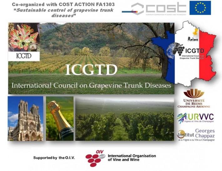 Congreso internacional sobre enfermedades de la madera de la vid 1