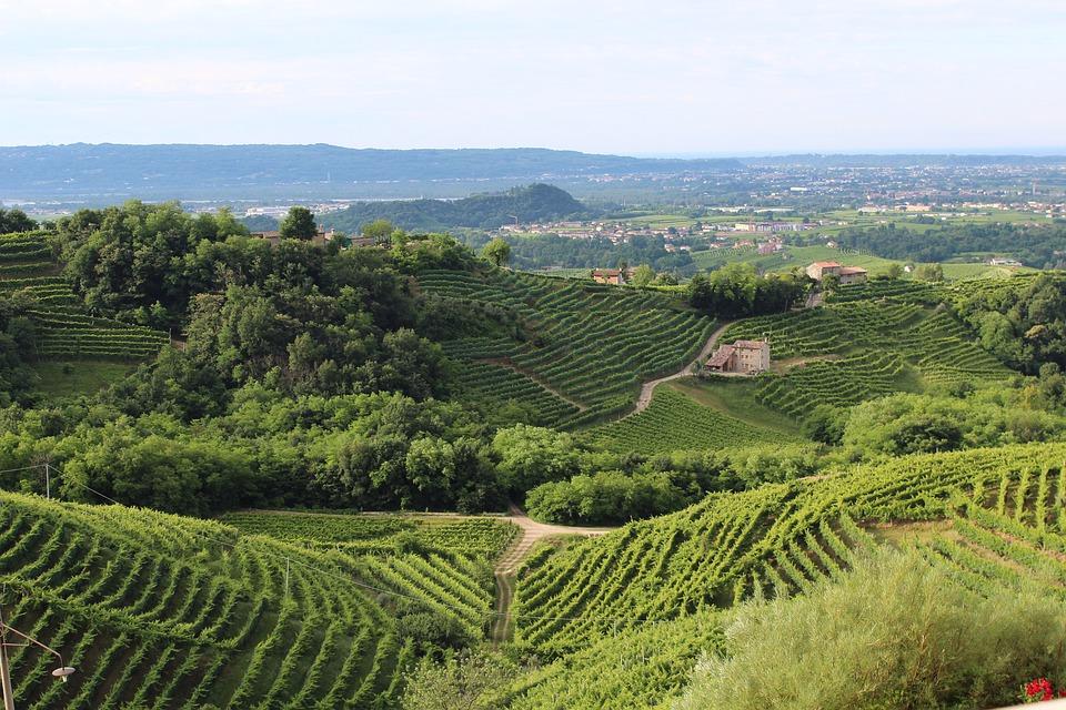 Si la zona del Veneto fuera un país, sería el cuarto exportador mayor del mundo en valor 1