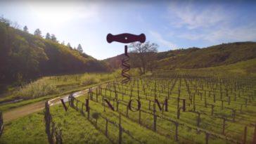 Vinome lanza su primera experiencia vinícola basada en el ADN 1