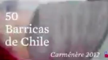50 Barricas, 50 Bodegas y 50 Enólogos para elaborar un único Carménère que represente a Chile 1