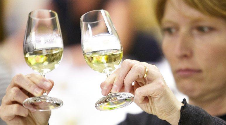 Wine & Spirit Education Trust (WSET) aumenta en un 19% las solicitudes de personas para formarse 1