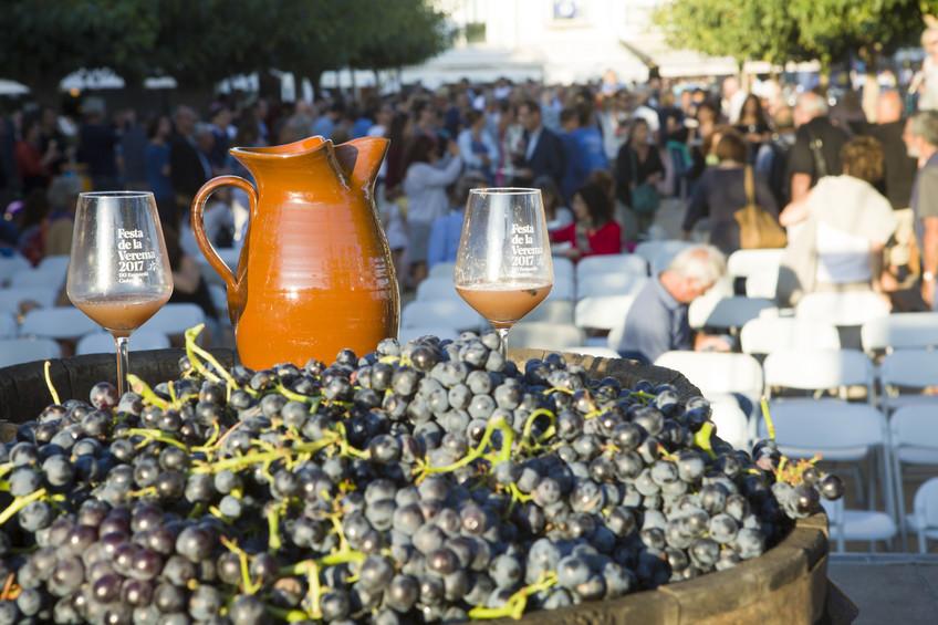 Más de 500 personas participan en la Fiesta de la Vendimia en Cadaqués 1