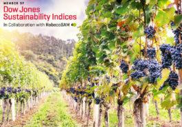Viña Concha y Toro entra al top #10 a nivel global del Índice de Sustentabilidad Dow Jones 1