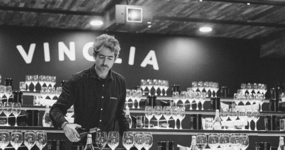 Vinolia, la mejor forma de aprender sobre los vinos de Chile 1