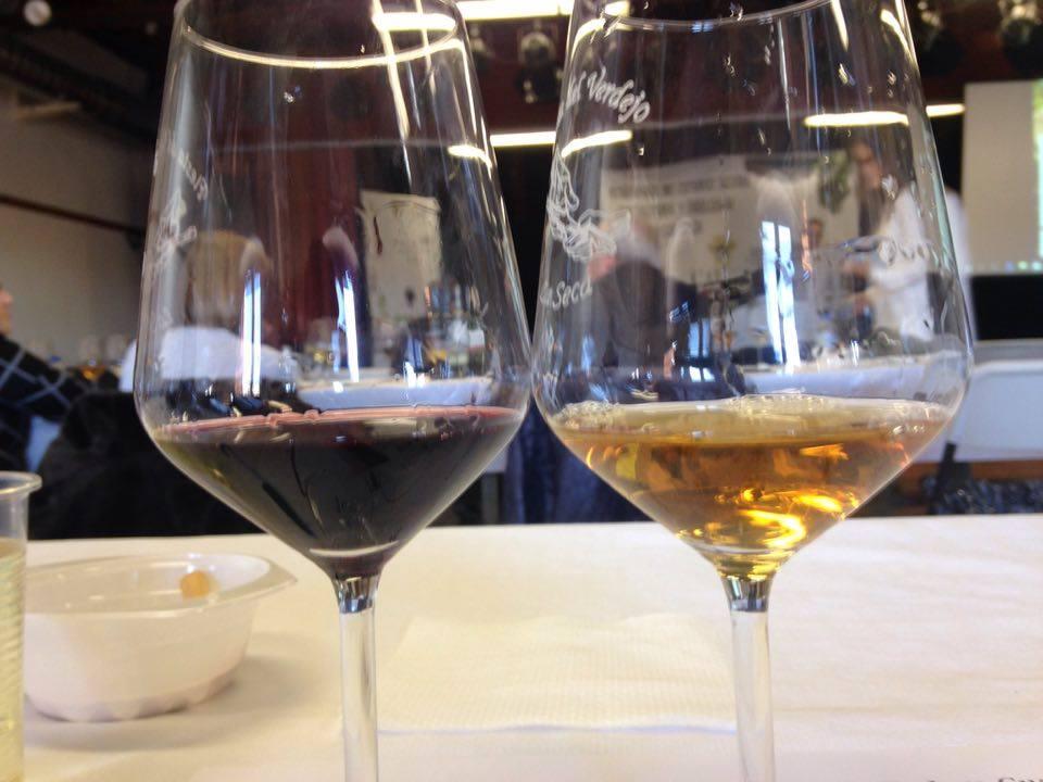 Asistimos al programa de estudio sobre viticultura y enología en La Seca