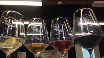 Asistimos al programa de estudio sobre viticultura y enología en La SecaA 5