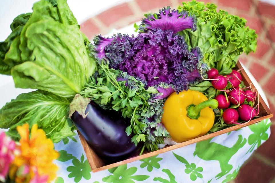 La Unión Europea ha aprobado el acuerdo sobre la nueva regulación para el sector orgánico 1