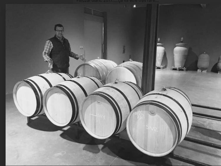 Château de Fieuzal no sacará vinos este año por culpa de la falta de uva 1