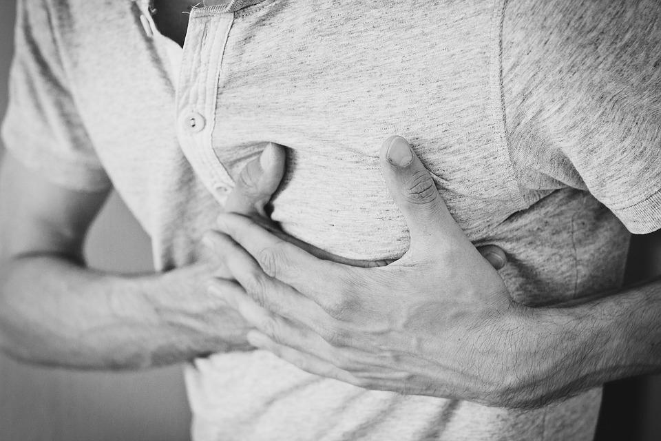 Regeneración del corazón